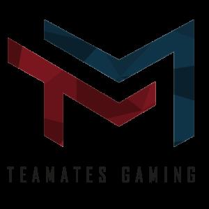 Teamates Gaming